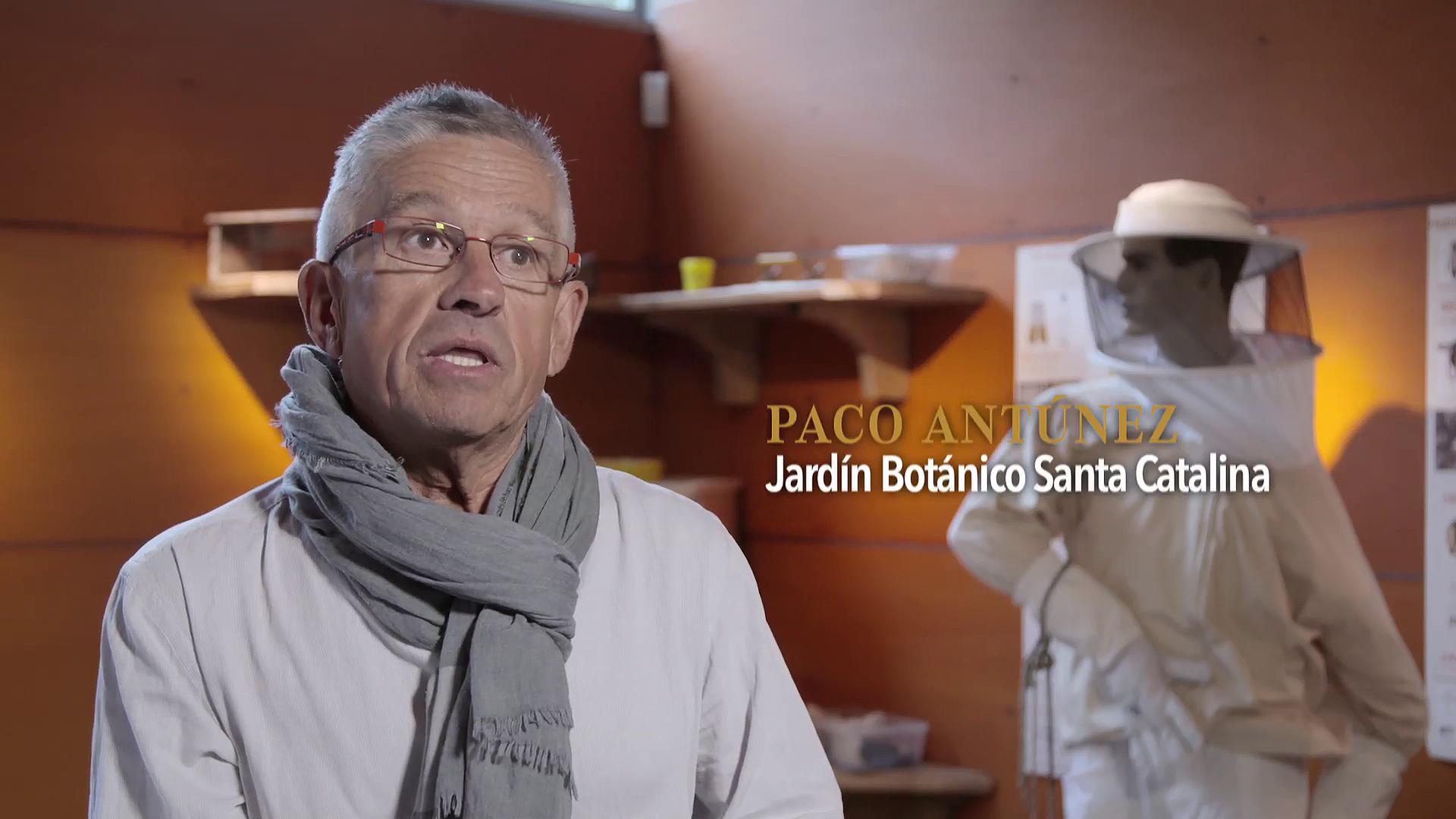 Premios Comercio y Turismo 2016. Jardín botánico de Santa Catalina - Paco Antunez