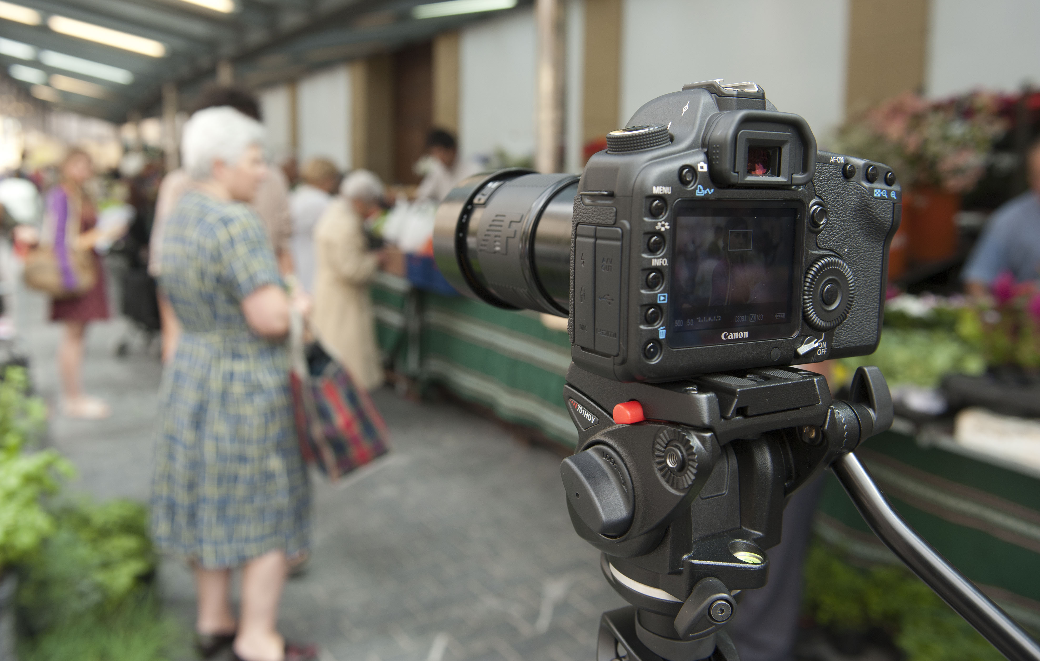 2011_06_25_cine_donosti_ojos_laia2.jpg