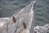 """Euskadi, """"referente"""" en el desarrollo de la energía de las olas"""