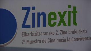 Cronica zinexit