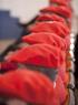 Ares entrega las credenciales a 20 nuevos comisarios