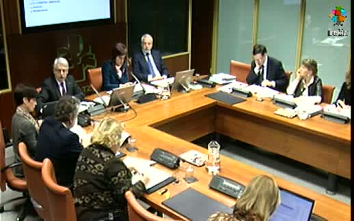 Comparecencia: Presidente del Tribunal Vasco de Cuentas Públicas (13-3-2012) [166:18]