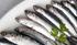 Pilar Unzalu presenta la campaña 'Ha llegado el tesoro del Cantábrico' para promocionar la anchoa, cuya pesquería avanza hacia la normalización