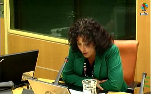Comparecencia de la Directora de Atención a las Víctimas de la Violencia de Género en el Parlamento Vasco  [77:14]