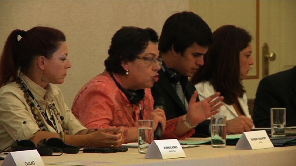 Intervención integra de Pilar Unzalu durante la reunión del NRG4SD [6:05]