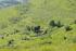 """Hoy entra en vigor la declaración del macizo  Hernio-Gazume, como """"Zona de Especial Conservación"""" (ZEC)"""