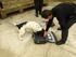 La Ertzaintza prepara perros especializados en detectar billetes