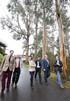 EGOIN consolida el sector de la madera en Euskadi tras la adquisición del Grupo Holtza con la colaboración del Gobierno Vasco