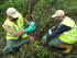 Representantes europeos elogian en Txingudi y Urdaibai las actuaciones medioambientales del Gobierno Vasco en la eliminación de plantas invasoras