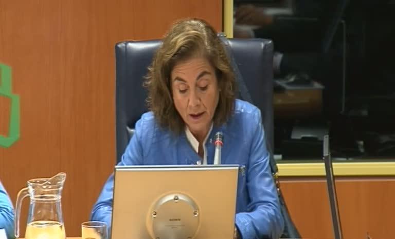 Presentación de la Agenda Estratégica del Euskera en el Parlamento Vasco [137:05]