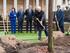 El lehendakari preside el acto oficial de plantación del nuevo Árbol de Gernika