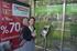 "Oregi: ""la tarjeta Mugi de Gipuzkoa ya es válida para viajar en el tranvía de Vitoria-Gasteiz"""