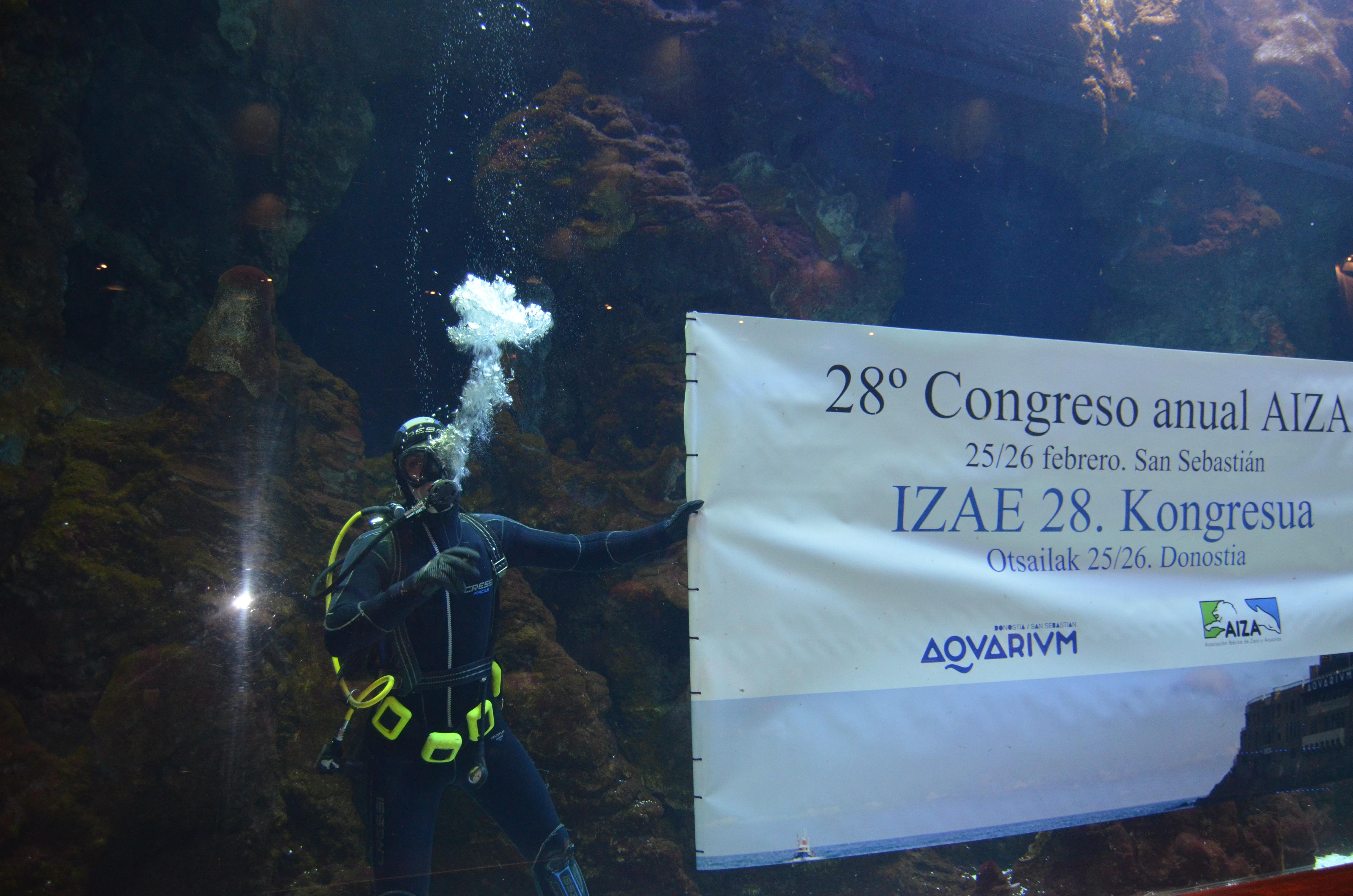 aquarium_aiza_02.jpg