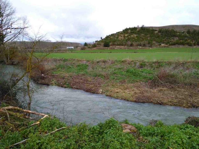 URA revegeta 1800 metros de riberas en el río Ihuda (Ayuda) a su paso por Berantevilla, Álava
