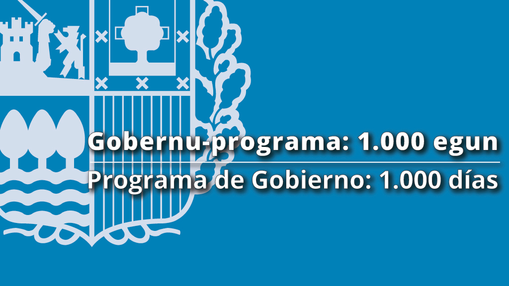 Programa de Gobierno: 1.000 días