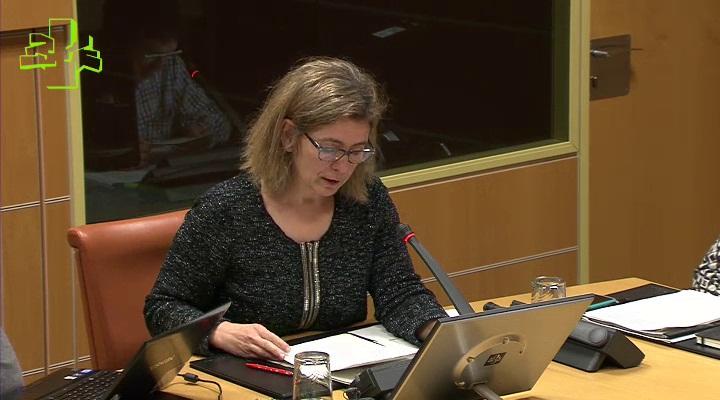 Ana Oregi explica en comisión parlamentaria el proceso de revisión en las Directrices de Ordenación del Territorio-DOT