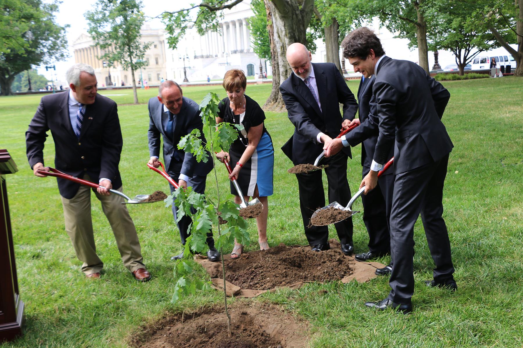 La consejera Tapia planta un retoño del árbol de Gernika en Washington
