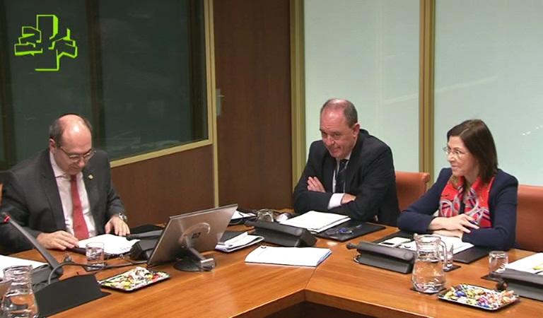 II Plan de Normalización del Euskera en Osakidetza 2013-2019. Un tercio de la plantilla de Osakidetza tiene acreditado el perfil lingüístico correspondiente a su puesto de trabajo