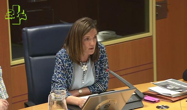 La Sailburu Beatriz Artolazabal anuncia la elaboración del IV Plan de Juventud-Gazte Plana 2020 que será presentado en el último trimestre