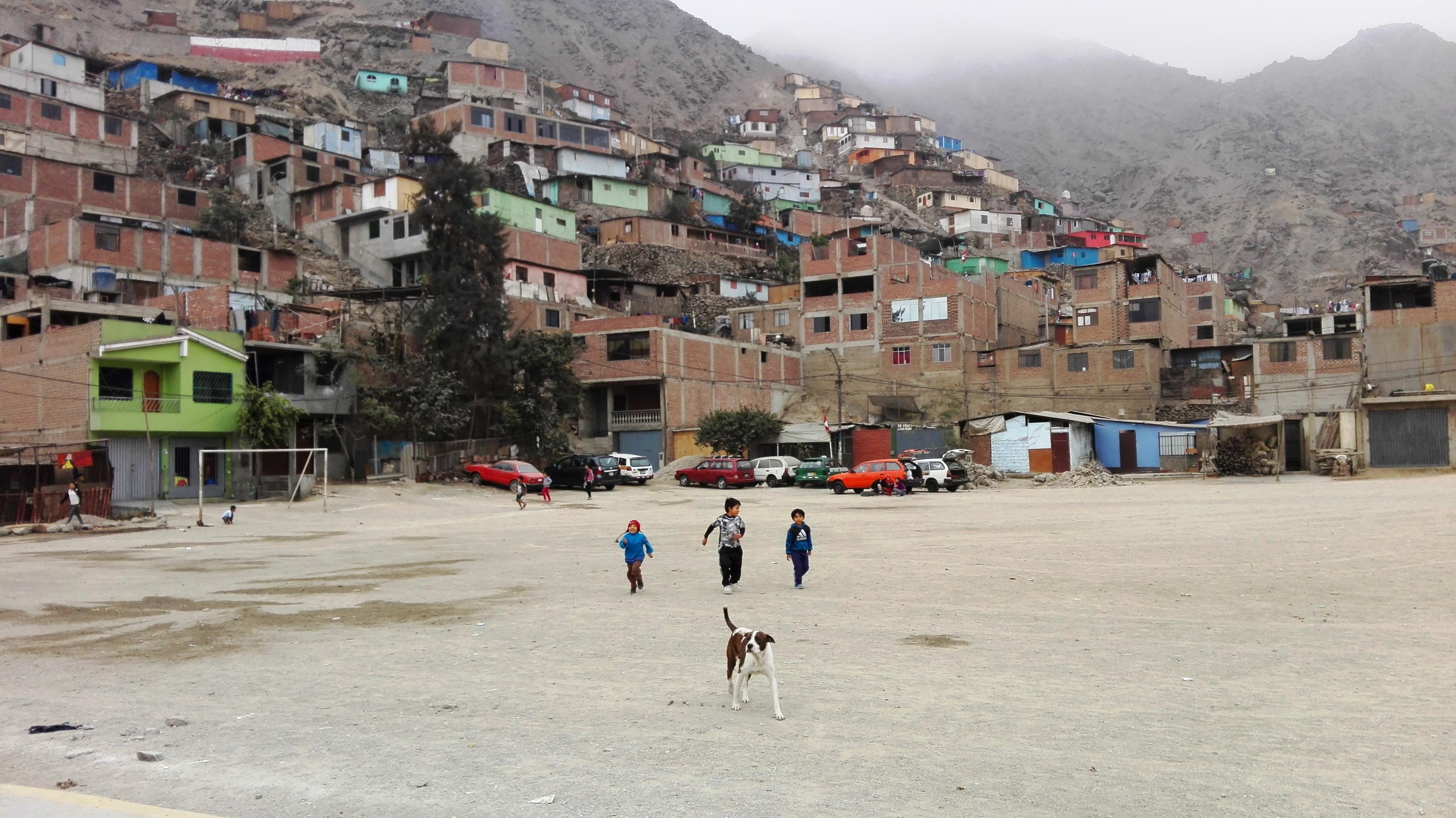 31_07_17_Peru._Juv_vasc_Coop__1_.jpg