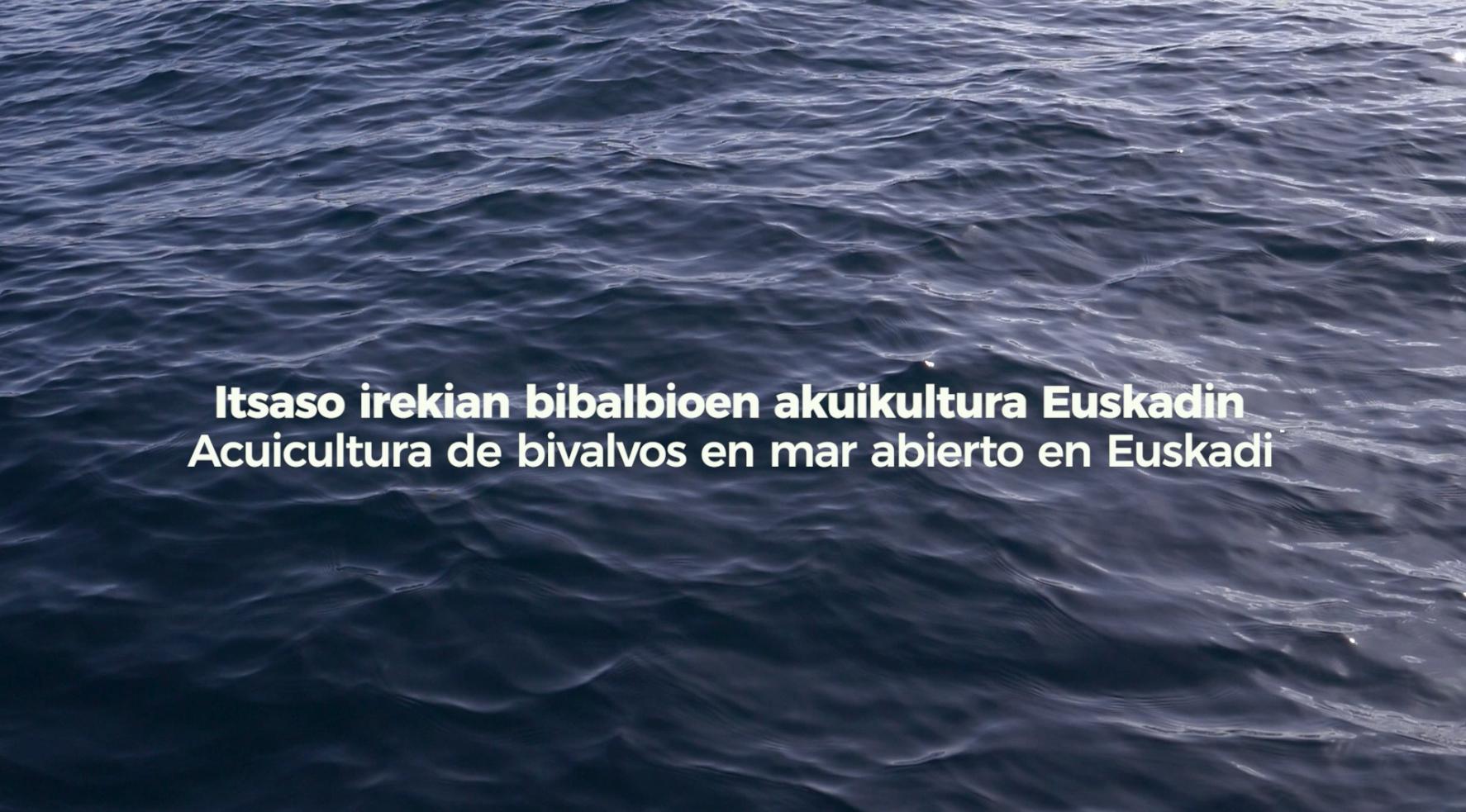 Itsaso irekian bibalbioen akuikultura Euskadin