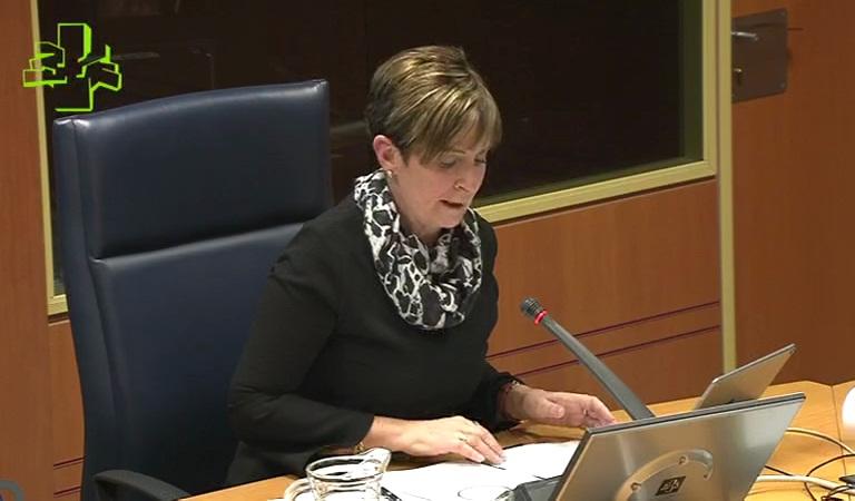 Comisión de Desarrollo Económico e Infraestructuras (06/02/2018)