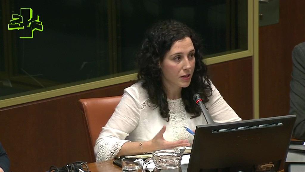 La directora de Kontsumobide, Nora Abete, ha presentado el plan estratégico 2018-2020 ante el Parlamento