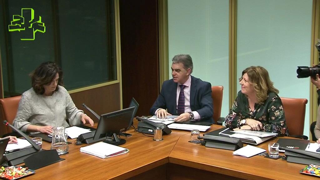 Beatriz Artolazabal presenta el Plan Estratégico de Empleo 2017-2020 en comisión parlamentaria
