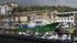 Euskadiko flotak 8.000 tona antxoa baino gehiago harrapatu ditu, antxoa kanpainari hasiera ona emanda