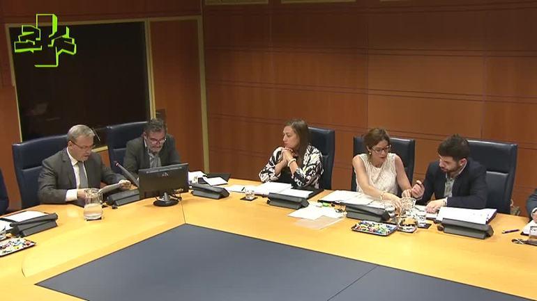 El consejero Retortillo ha presentado el Plan Estratégico de Turismo, Comercio y Consumo en el Parlamento Vasco