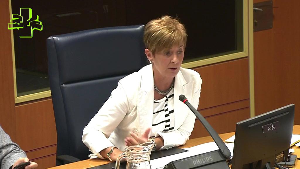 Comisión de Desarrollo Económico e Infraestructuras (16/07/2018)