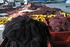 Las rederas de Hondarribia estrenan nuevas instalaciones
