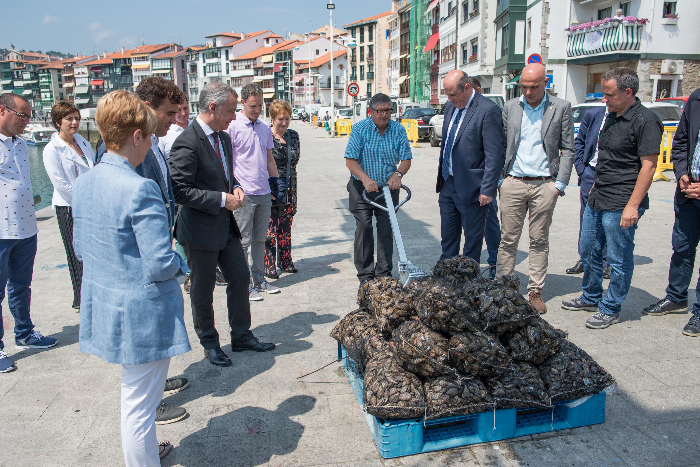 Euskadik jada ekoizten ditu muskuiluak Mendexako Akuikulturako Parkean