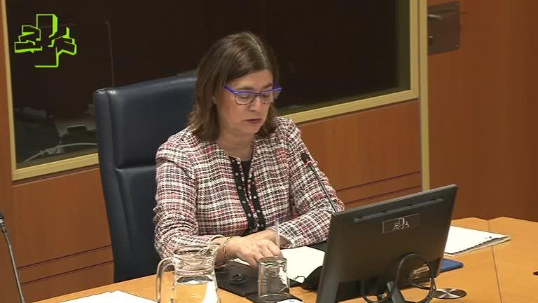 Comisión de Instituciones, Seguridad y Gobernanza Pública (27/11/2019)