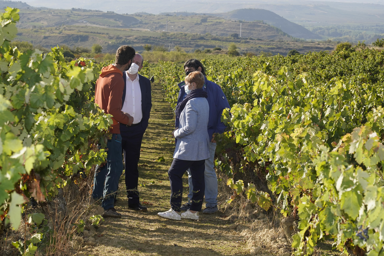 La_consejera_de_Desarrollo_Econ_mico__Sostenibilidad_y_Medio_Ambiente__Arantxa_Tapia__visita_la_Rioja_alavesa_con_motivo_de_la_campa_a_de_la_vendimia20200929_5600.jpg