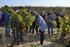 La_consejera_de_Desarrollo_Econ_mico__Sostenibilidad_y_Medio_Ambiente__Arantxa_Tapia__visita_la_Rioja_alavesa_con_motivo_de_la_campa_a_de_la_vendimia20200929_5412.jpg