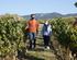 La_consejera_de_Desarrollo_Econ_mico__Sostenibilidad_y_Medio_Ambiente__Arantxa_Tapia__visita_la_Rioja_alavesa_con_motivo_de_la_campa_a_de_la_vendimia20200929_5461.jpg