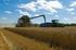 El Gobierno Vasco abonará 20 millones de euros como anticipo de las ayudas de la Política Agraria Común