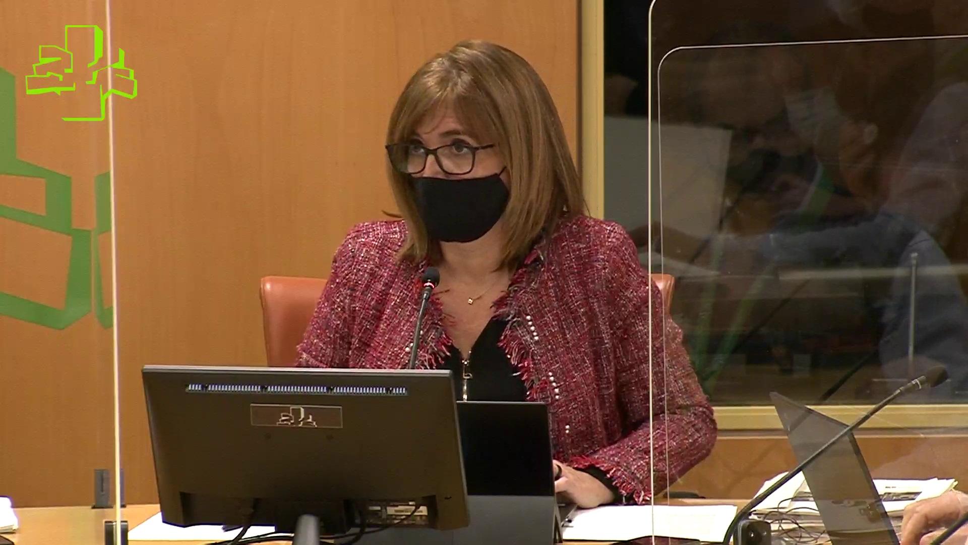 Comisión de Sostenibilidad, Medio Ambiente y Medio Natural (24/11/2020) [88:18]