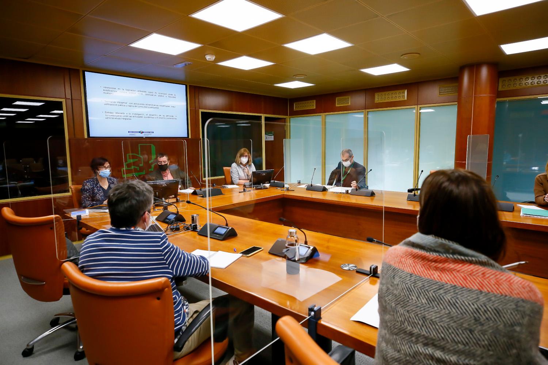 Comisión de Sostenibilidad, Medio Ambiente y Medio Natural (9/2/2021) [37:38]