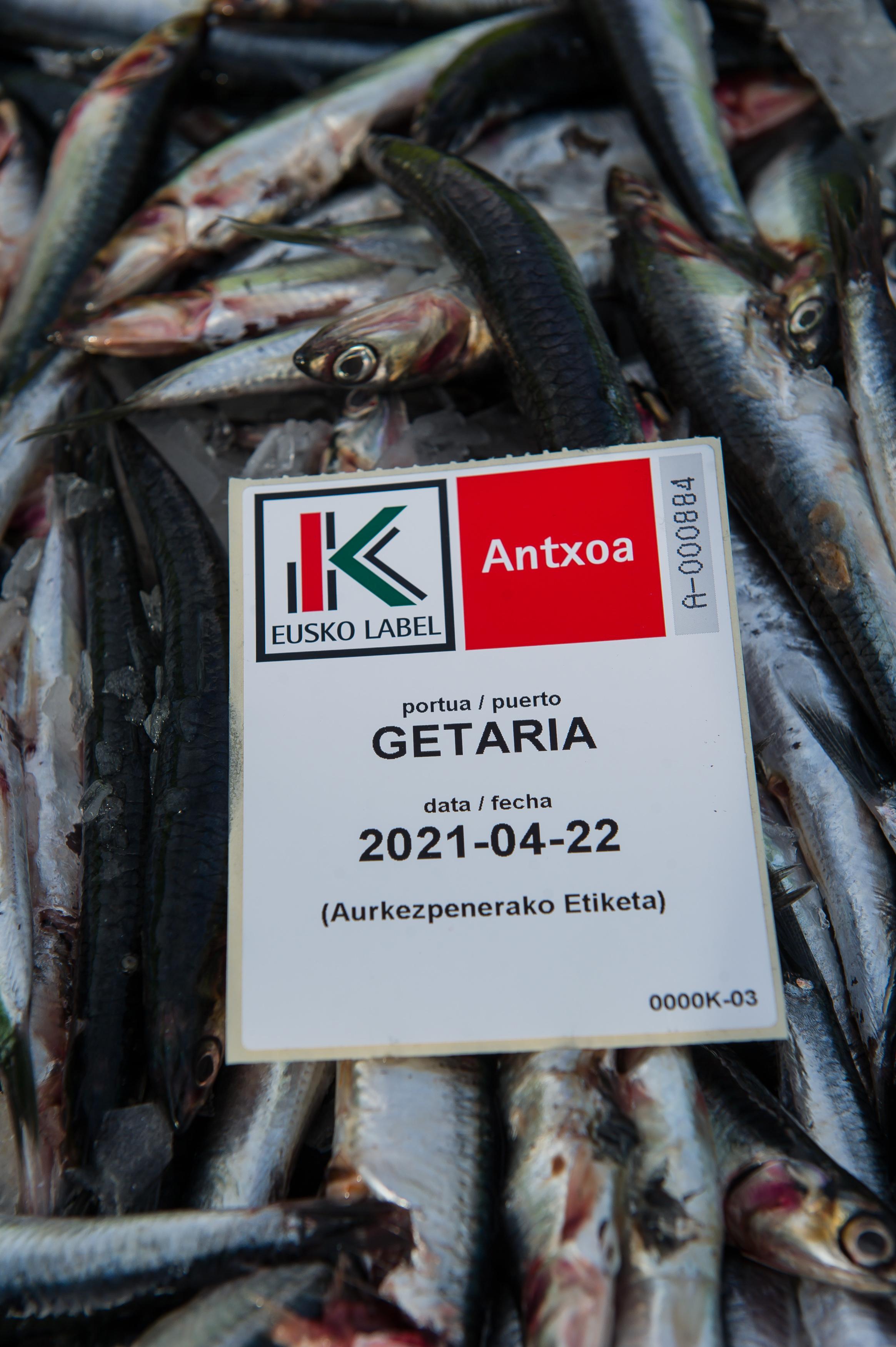 20210421-TAPIA-ANTXOA-114.jpg