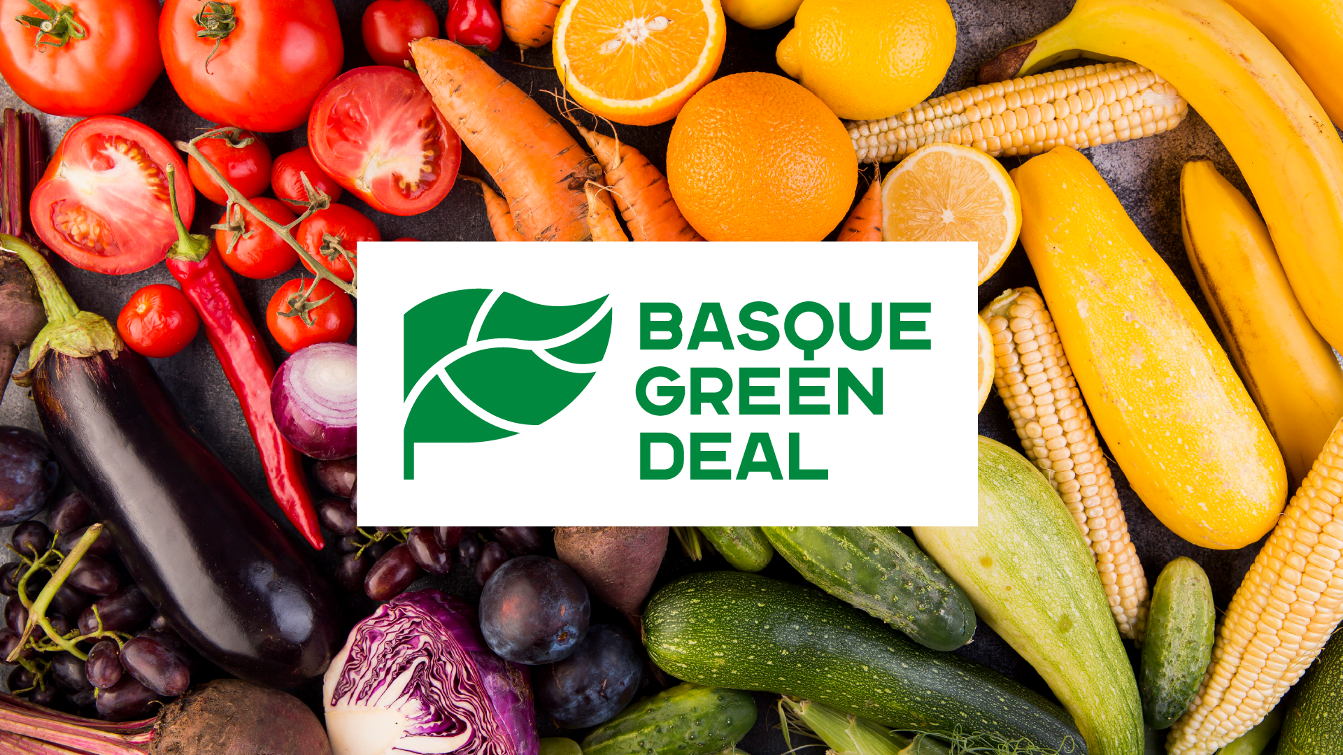 Basque_Green_Deal_14R.png