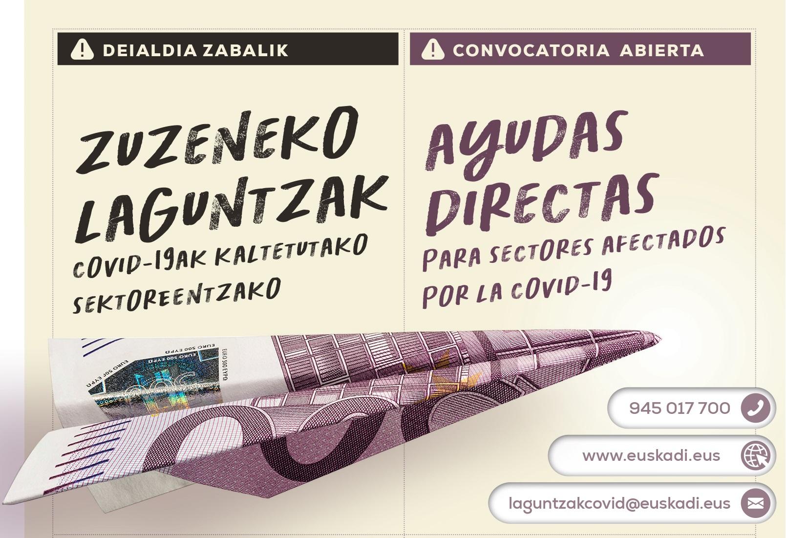 Irekia_ayudas_directas.jpg