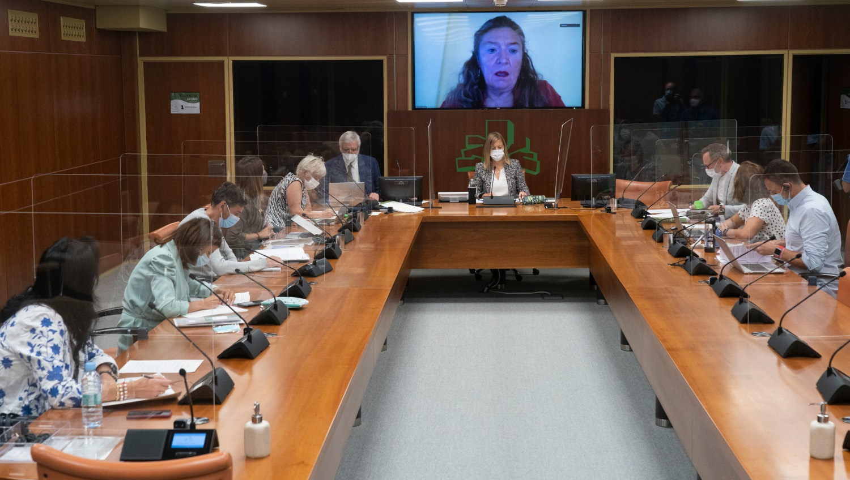 Comisión de Salud (15/09/2021) [99:19]